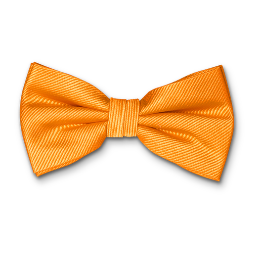 Nœud Papillon Orange - Soie (1)