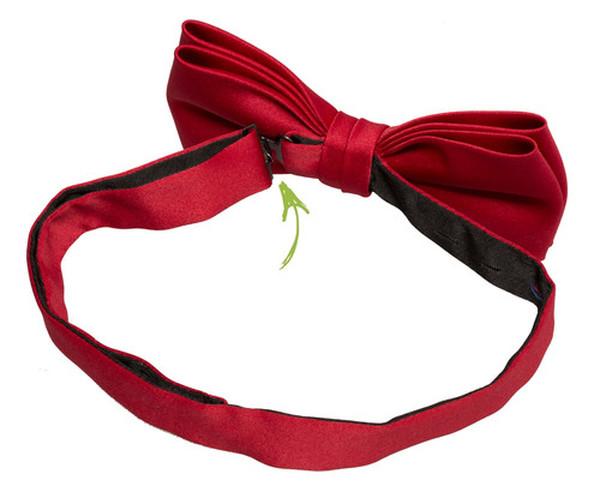 Comment mettre un n ud papillon d j fait - Comment faire un noeud papillon avec un ruban ...