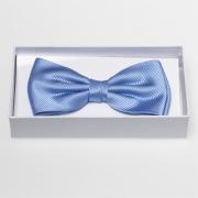 Noeud papillon bleu clair - 100% soie